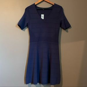 NWT Ann Taylor Navy Knitted Dress